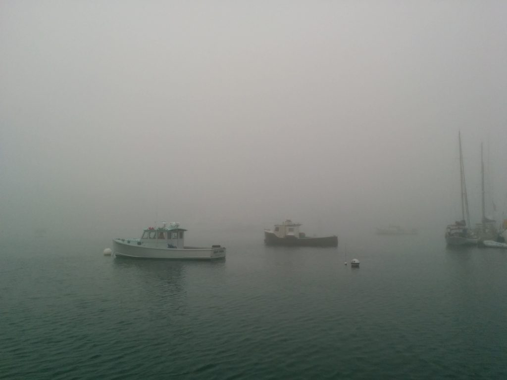 Fog in Northeast Harbor